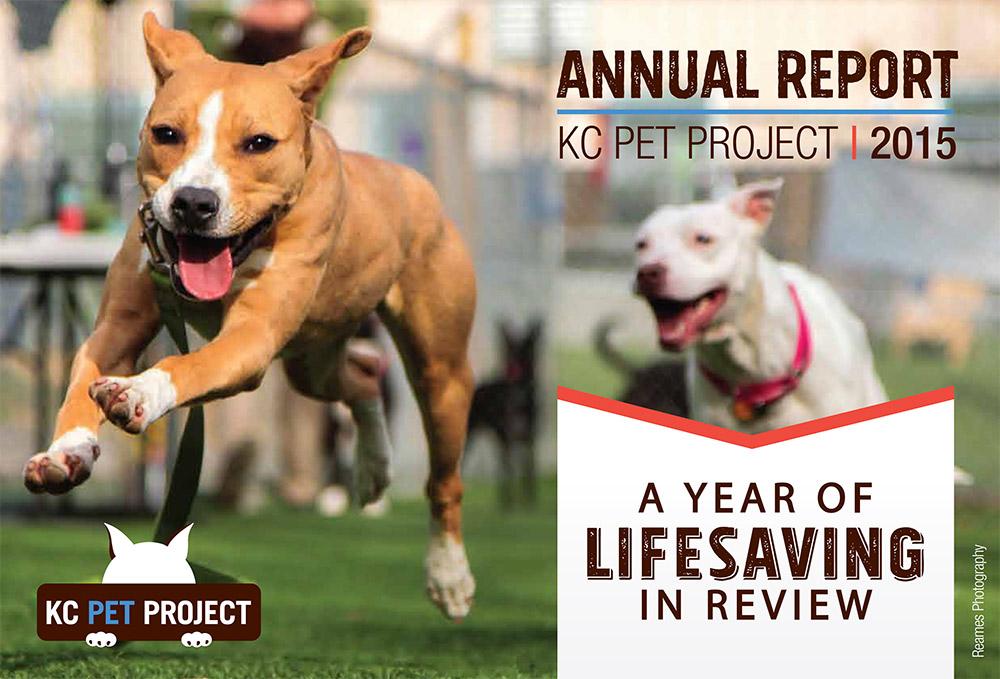 Annual report design for nonprofits