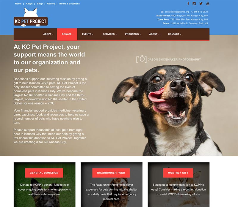 KC Pet Project website design