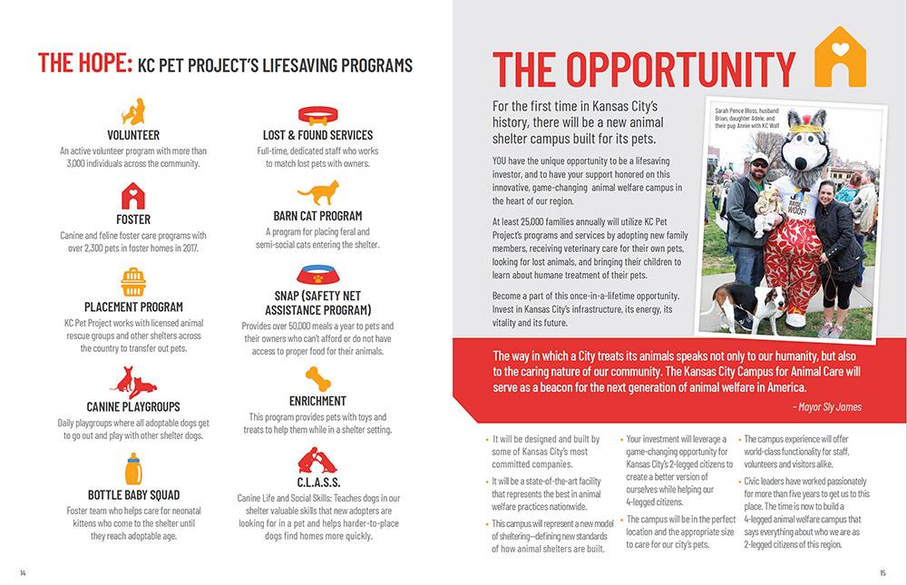 Nonprofit brochure design