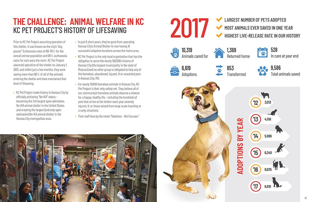 Graphic Design - Prospectus for nonprofit